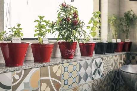 52. Hortaem casa com vasos perto da janela. Projeto de Casa Aberta