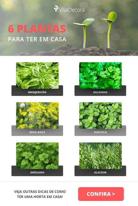 Infográfico – Horta em casa