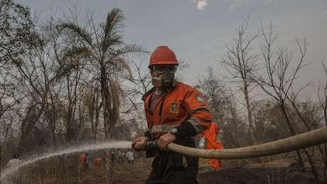 'Não temos mais homens, não há voluntários o bastante', conta a mulher de um dos que têm ajudado no combate às chamas