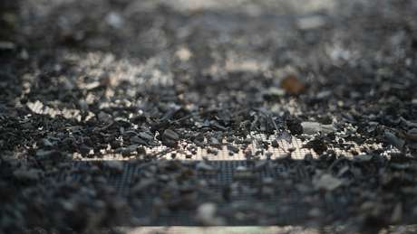 Especialistas buscam restos de corpos peneirando a terra