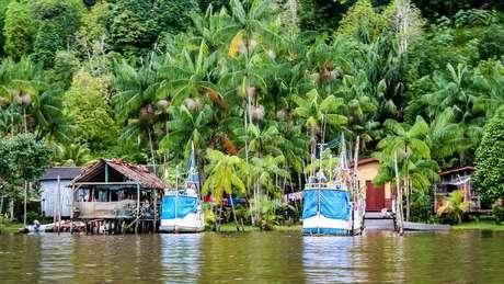 Região amazônica na Guiana Francesa; ao longo da história, ocupação no território se deu na costa, deixando áreas de floresta ao sul mais intocadas