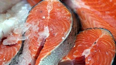 Os pescados são recomendáveis à saúde, porém a composição nutricional dos peixes criados em cativeiro depende da ração que é fornecida, diz especialista