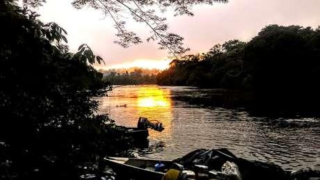 A árvore mais alta da Amazônia foi localizada a 10 km floresta adento, a partir da margem do rio Jari