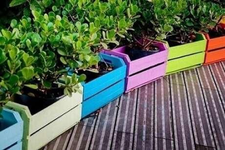 40. Decoração com caixotes de madeira coloridos usados como cachepô. Projeto de Marina Makowiecki