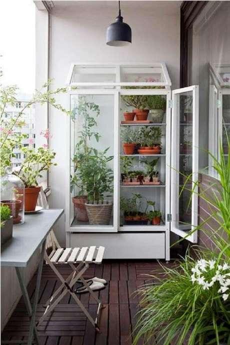 9. Armário de vidro como suporte para vasos de plantas.