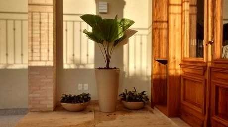 17. Você também pode utilizar vasos de plantas no hall de entrada.