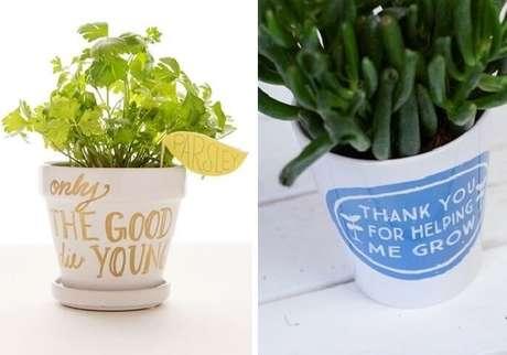 55. Vasos de plantas com frases e citações. Fonte: Pinterest
