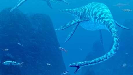Uma das especulações é de que o monstro seria um plesiossauro, mas nenhum DNA da criatura foi encontrado nas águas do lago