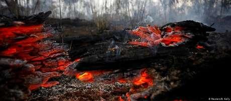 """""""Recursos irão para prevenção de queimadas e regeneração da Floresta Amazônica"""", diz Raquel Dodge"""