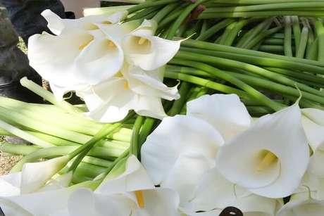 35. As flores do tipo copo de leite podem ser usadas para decorar diferentes lugares da sua casa – Por: Pinterest