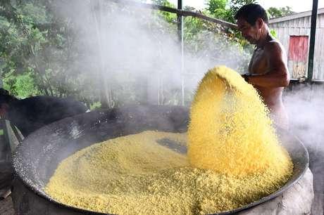 Produção de farinha de mandioca requer preparo rigoroso