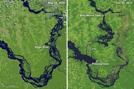 Imagens de satélite mostram como vazão de água na Volta Grande do Xingu caiu drasticamente após o início do desvio para alimentar Belo Monte.