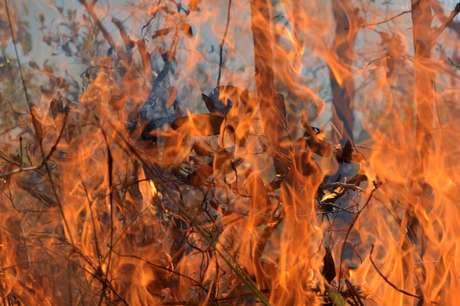Incêndio florestal perto de reserva Xavante no Estado do Matro Grosso 04/09/2019 REUTERS/Lucas Landau