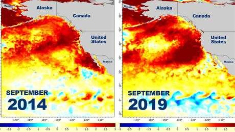 Mapas da NOAA mostram como as temperaturas do oceano em 2014 são semelhantes às de setembro de 2019.