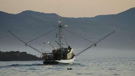 As altas temperaturas da água também prejudicam a pesca