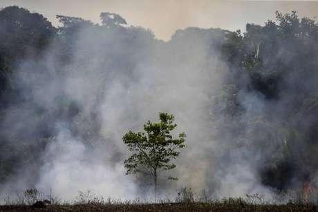 Incêndio florestal perto da rodovia Transamazônica, em Manicoré, no Amazonas
