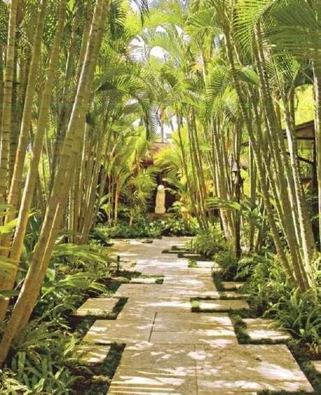 46. Espaço aconchegante com gramado tipo preta e coqueiros. Fonte: Pinterest