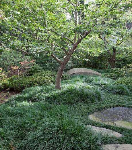 11. A grama preta ganha destaque junto as pedras. Fonte: Pinterest