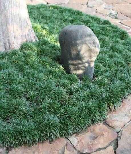 19. Cantinhos espaciais do jardim contam coma presença da grama preta. Fonte: Pinterest