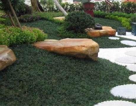 21. Grama preta anã para compor a jardinagem do quintal. Fonte: Mercado Livre
