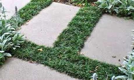 61. Grama do tipo preta plantada por entre as placas de concreto. Fonte: Pinterest