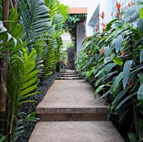 44. Valorize o corredor das plantas forrando com grama do tipo preta. Fonte: Revista Casa e Jardim