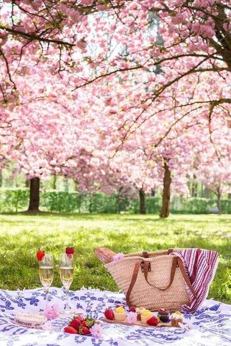 77. Frutas e doces para piquenique romântico – Foto: Pinosy