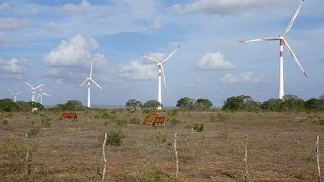 Nordeste é responsável por 86% da produção de energia eólica do Brasil
