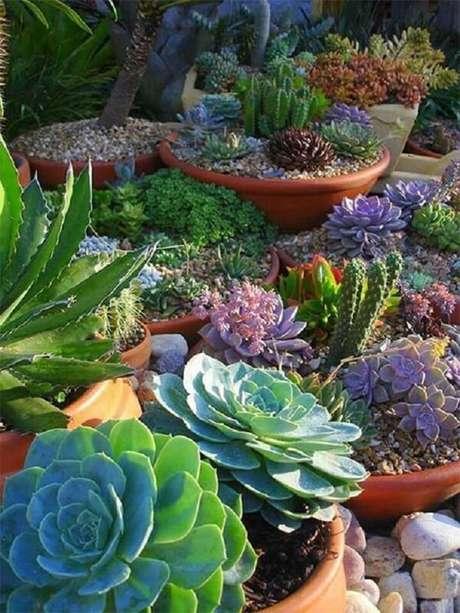 17. Jardim de suculentas mescla cores e texturas. Fonte: Pinterest