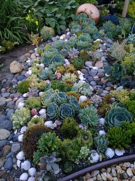 18. O vaso de barro faz parte da composição do jardim de suculentas. Fonte: Pinterest