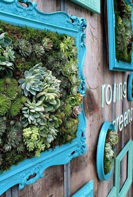 35. O jardim de suculentas foi fixado em uma moldura com tom azul tiffany. Fonte: Rolling Greens