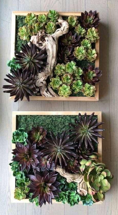 36. O jardim de suculentas forma a composição de dois quadros no ambientes. Fonte: Etsy