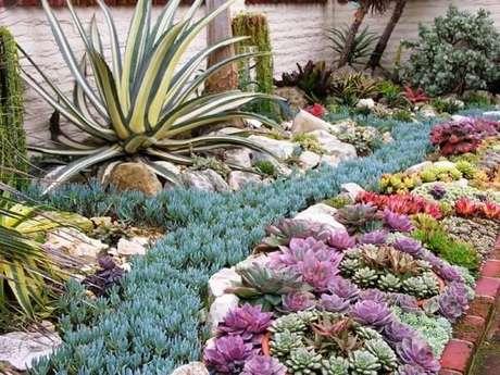7. É possível formar lindas forrações com o jardim de suculentas. Fonte: Pinterest