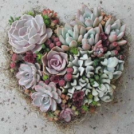 56. O jardim de suculentas podem formar um lindo arranjo de coração. Fonte: Pinterest
