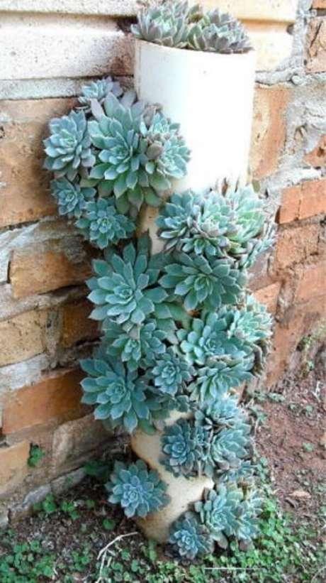 54. Tubos de PVC foram utilizados para compor esse jardim de suculentas. Fonte: Pinterest