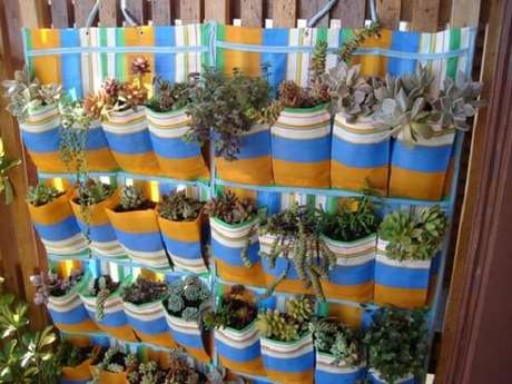 13. Jardim de suculentas estruturado em uma sapateira de plástico. Fonte: Catraca Livre