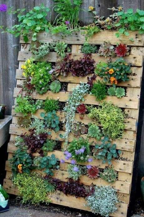 12. Monte um jardim vertical com suculentas utilizando um pallet de madeira. Fonte: Consumo Social