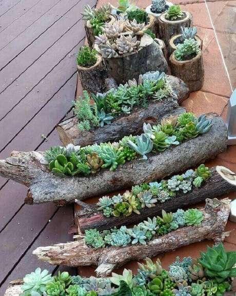 43. Utilize troncos de madeira como base para seu jardim de suculentas. Fonte: 1001 Ideias