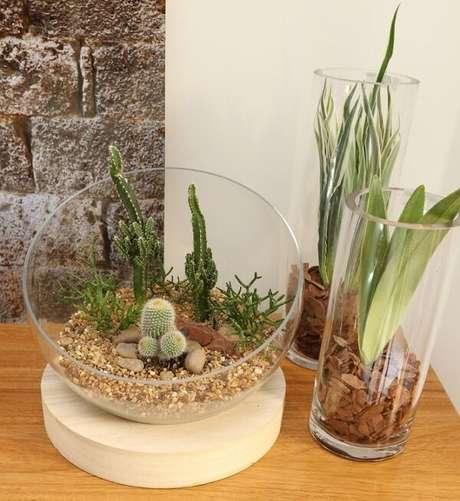 29. Mini jardim de suculentas para decorar os ambientes internos de casa. Projeto por Bianchi & Lima Arquitetura