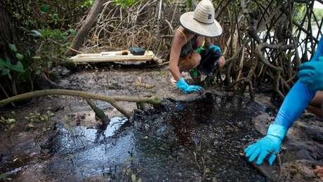 A fotógrafa Isabel Sant'Ana descreve cenário 'assustador' em manguezal