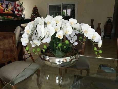 2. As orquídeas são plantas que purificam o ambiente. Fonte: Elo7