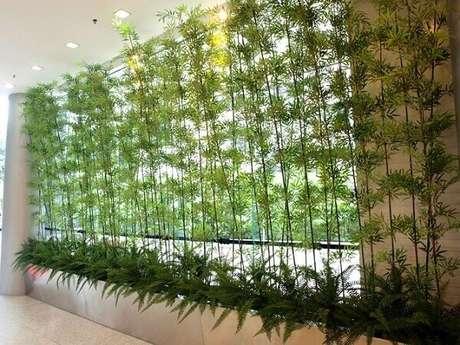 84. Cerca viva de bambu viva decorar de ambientes. Fonte: Decor Ideias