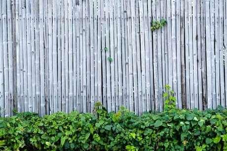 66. Decore o seu jardim com uma cerca de bambu. Fonte: Pinterest