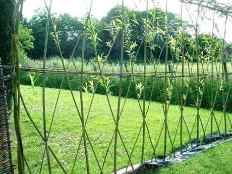 5. Modelo de cerca vida de bambu. Fonte: Pinterest