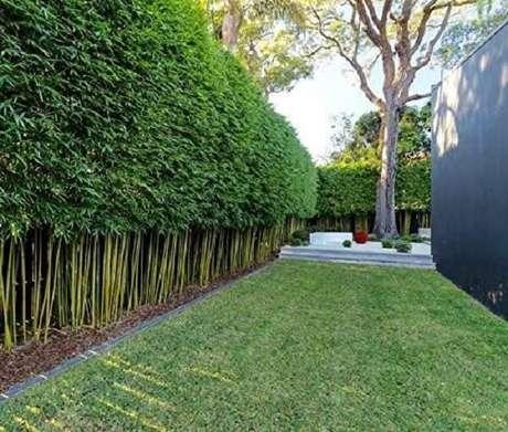 6. Modelo de cerca viva de bambu ornamental para casa. Fonte: Pinterest