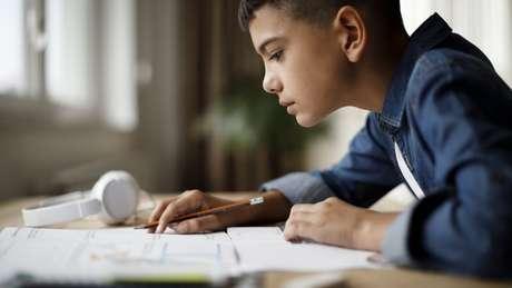 Cientista sugere revisar o conteúdo assim que ele for aprendido, para reforçar as correntes cerebrais ligadas a aquele aprendizado, evitando perdê-las