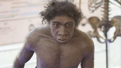 Simulação do Homo erectus, que, segundo Everett, foi o 'inventor' da linguagem