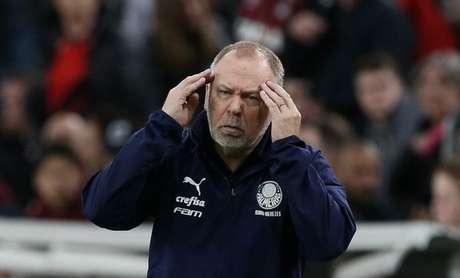 Mano Menezes chegou para comandar o Palmeiras em setembro deste ano (Cesar Greco)