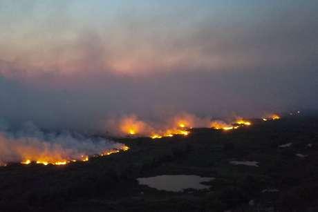 Pantanal sofre com fogo.