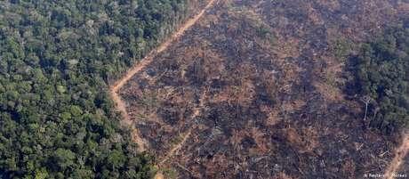 Área devastada em Rondônia, o quarto estado que mais devastou a floresta em 12 meses